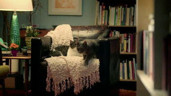 Purina Cat Chow Healthy Weight TV Spot, 'Bookstore' - Thumbnail 4