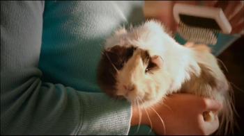 PetSmart TV Spot, 'Small Pet Spectacular' - 119 commercial airings