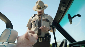 GEICO TV Spot, 'Maxwell the Piggy Gets Pulled Over'