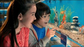 PetSmart Spring Savings Sale TV Spot, 'Tropical Fish'