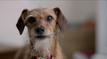 Skylanders TV Spot, 'Take a Seat Furball' - Thumbnail 3