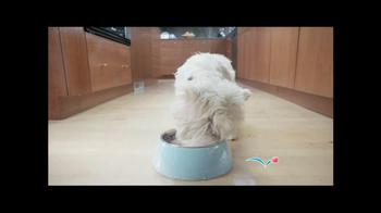 PetSmart Grooming TV Spot, 'Table Manners' - Thumbnail 1