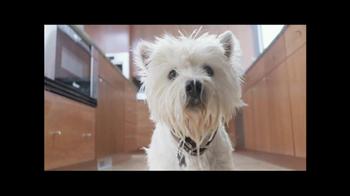 PetSmart Grooming TV Spot, 'Table Manners'