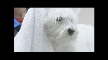 PetSmart Grooming TV Spot, 'Table Manners' - Thumbnail 5