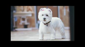 PetSmart Grooming TV Spot, 'Table Manners' - Thumbnail 8