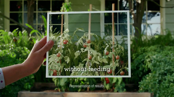 Miracle-Gro Liquafeed TV Spot, 'Tales from the Garden: Foodies' - Thumbnail 8