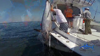 Gloucester Charter Connection TV Spot, 'Do You Want to Catch a Giant Tuna?' - Thumbnail 9