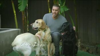 Wen Pets TV Spot, 'Soft and Shiny Coats' - Thumbnail 3