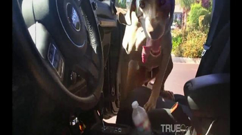 TrueCar TV Spot, 'True Love' - Thumbnail 2