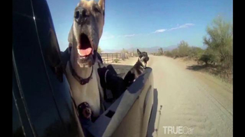 TrueCar TV Spot, 'True Love' - Thumbnail 3