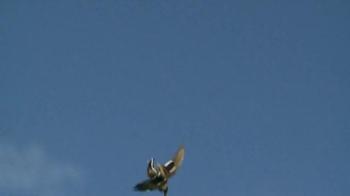 Fiocchi Ammunition TV Spot, 'Taking the Shot' - Thumbnail 6