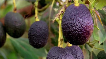 Avocados From Mexico TV Spot, 'Made with Love All Year Round' - Thumbnail 6