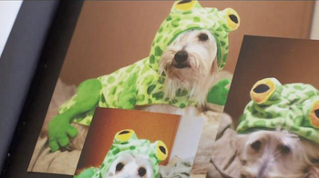 PetSmart TV Spot, 'Partners in Pethood: Welcome to Pethood' Ft. Anna Faris - Thumbnail 2
