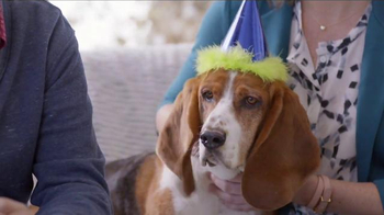 PetSmart TV Spot, 'Partners in Pethood: Welcome to Pethood' Ft. Anna Faris - Thumbnail 7