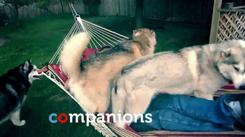 PETCO TV Spot, 'What We Feed Them Matters: Relationships' - Thumbnail 7