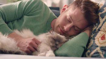 Purina Cat Chow Gentle TV Spot, 'Adjustments'