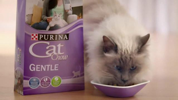 Purina Cat Chow Gentle TV Spot, 'Adjustments' - Thumbnail 7