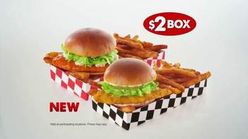 Checkers & Rally's Chicken Slider Box TV Spot, 'All About the Classics' - Thumbnail 9