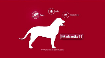 K9 Advantix II TV Spot, 'For the Love of Dog' - Thumbnail 4