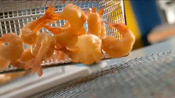 Long John Silver's Fish & Shrimp Basket TV Spot, 'Crave the Taste' - Thumbnail 2
