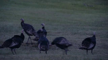 Lacrosse TV Spot, 'Turkey Hunting'