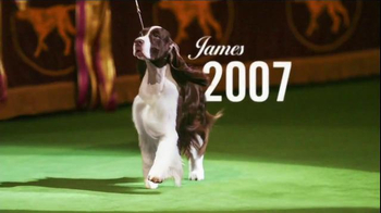 Purina Pro Plan Westminster TV Spot, 'Best in Show: Miss P' - Thumbnail 1