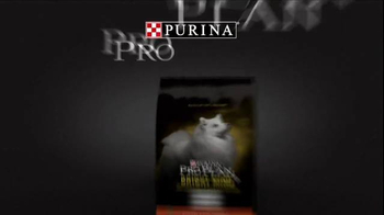 Purina Pro Plan Westminster TV Spot, 'Best in Show: Miss P' - Thumbnail 9