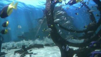 Atlantis When the Sea Gave Way to the Sky TV Spot, 'Resort Credit' - Thumbnail 2