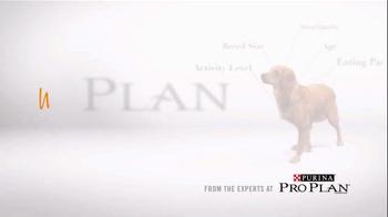 Purina My Plan TV Spot, 'Unique' - Thumbnail 7