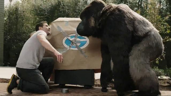 Gorilla Clear Repair TV Spot - 4367 commercial airings