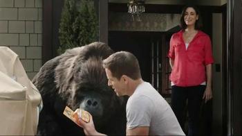 Gorilla Clear Repair TV Spot - Thumbnail 5