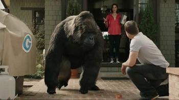 Gorilla Clear Repair TV Spot - Thumbnail 8