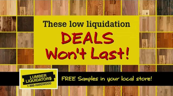 Lumber Liquidators Laminate & Vinyl Flooring Sale TV Spot - Thumbnail 9