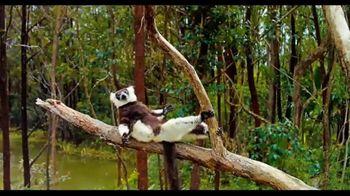 Island Of Lemurs: Madagascar - 17 commercial airings