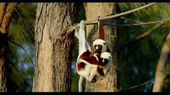 Island Of Lemurs: Madagascar - Thumbnail 2