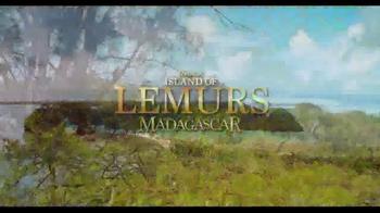 Island Of Lemurs: Madagascar - Thumbnail 8