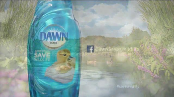 Dawn TV Spot, 'Little Things' Song by Helen Austin - Thumbnail 7