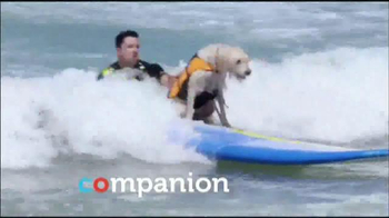 PETCO TV Spot, 'One To Remember: Summer' - Thumbnail 9