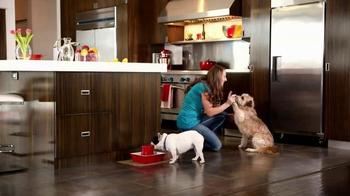 PetSafe Drinkwell TV Spot, 'Protect' - Thumbnail 7