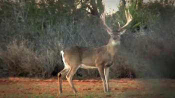 Whitetail Institute of North America TV Spot, 'More Deer' - Thumbnail 2