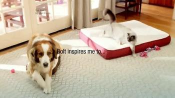 PetSmart TV Spot, 'Choose Your Battles' Song by Matt Costa - Thumbnail 4