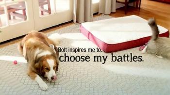 PetSmart TV Spot, 'Choose Your Battles' Song by Matt Costa - Thumbnail 5