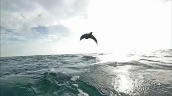 Oceana TV Spot, 'Keep Dolphins Singing' Featuring Miranda Cosgrove - Thumbnail 8