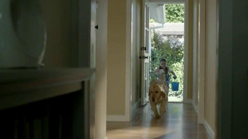 BEHR Paint Premium Plus Ultra TV Spot, 'Wet Dog' Song by Bronze Radio Return - Thumbnail 1
