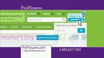 ProFlowers TV Spot, 'Día de las Madres' [Spanish] - Thumbnail 9