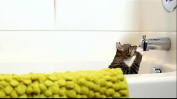 PetSafe Fountain TV Spot, 'Cats' - Thumbnail 3