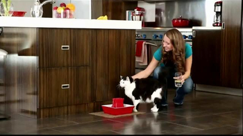 PetSafe Fountain TV Spot, 'Cats' - Thumbnail 6