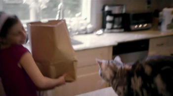 Iams Purrfect Delicacies TV Spot, 'Ginger' - Thumbnail 1