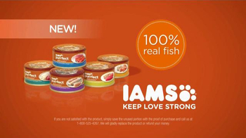 Iams Purrfect Delicacies TV Spot, 'Ginger' - Thumbnail 10
