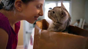 Iams Purrfect Delicacies TV Spot, 'Ginger'